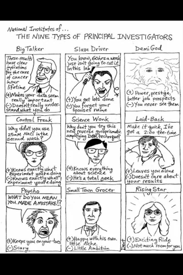 9 types