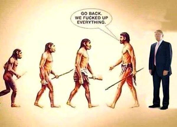 CounterEvolution