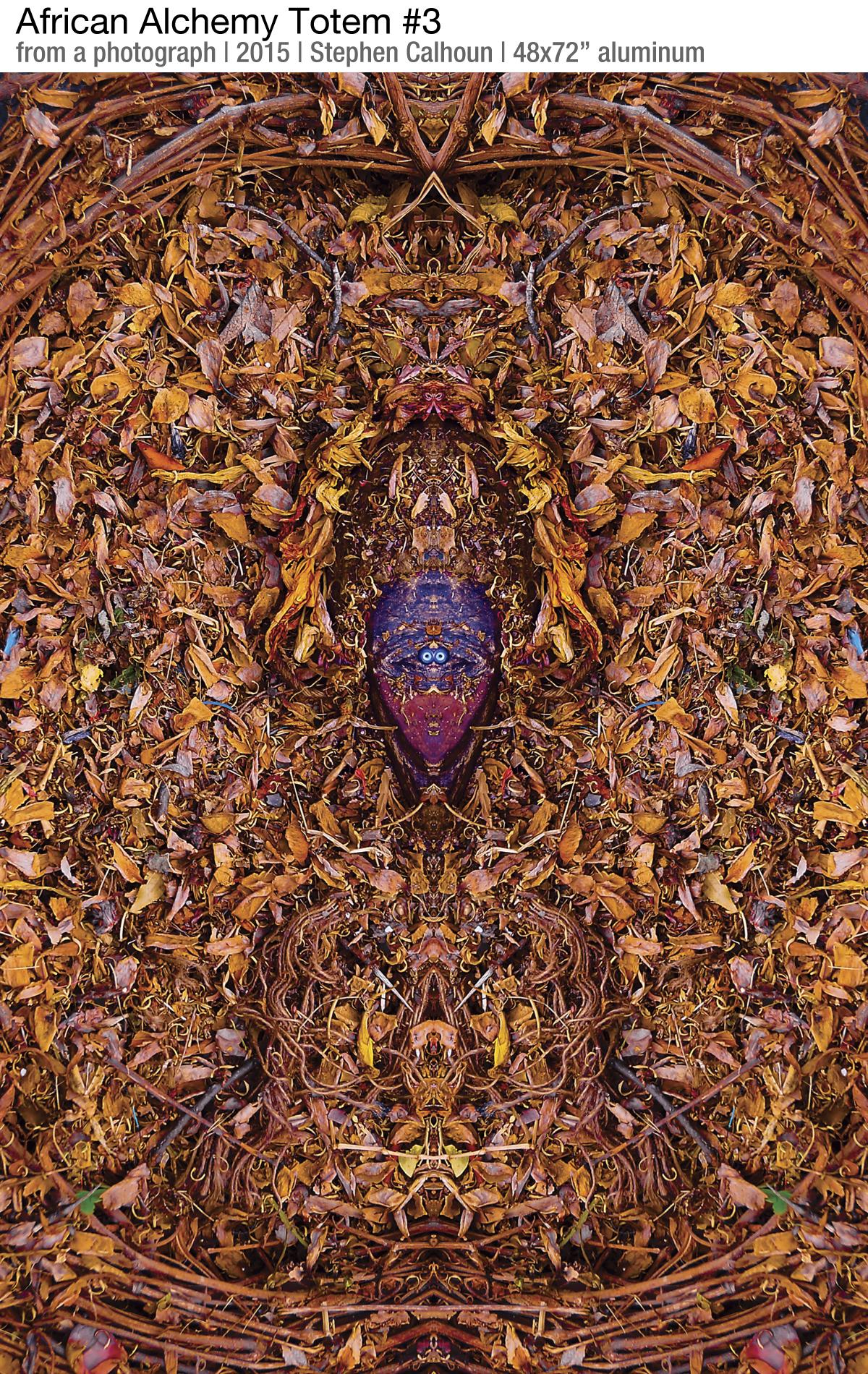 FB-Stephen-Calhoun-African Alchemy Totem #3-48x72
