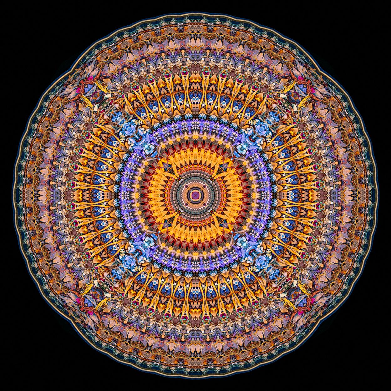 Cg Jung Mandalas Squareone Explorations