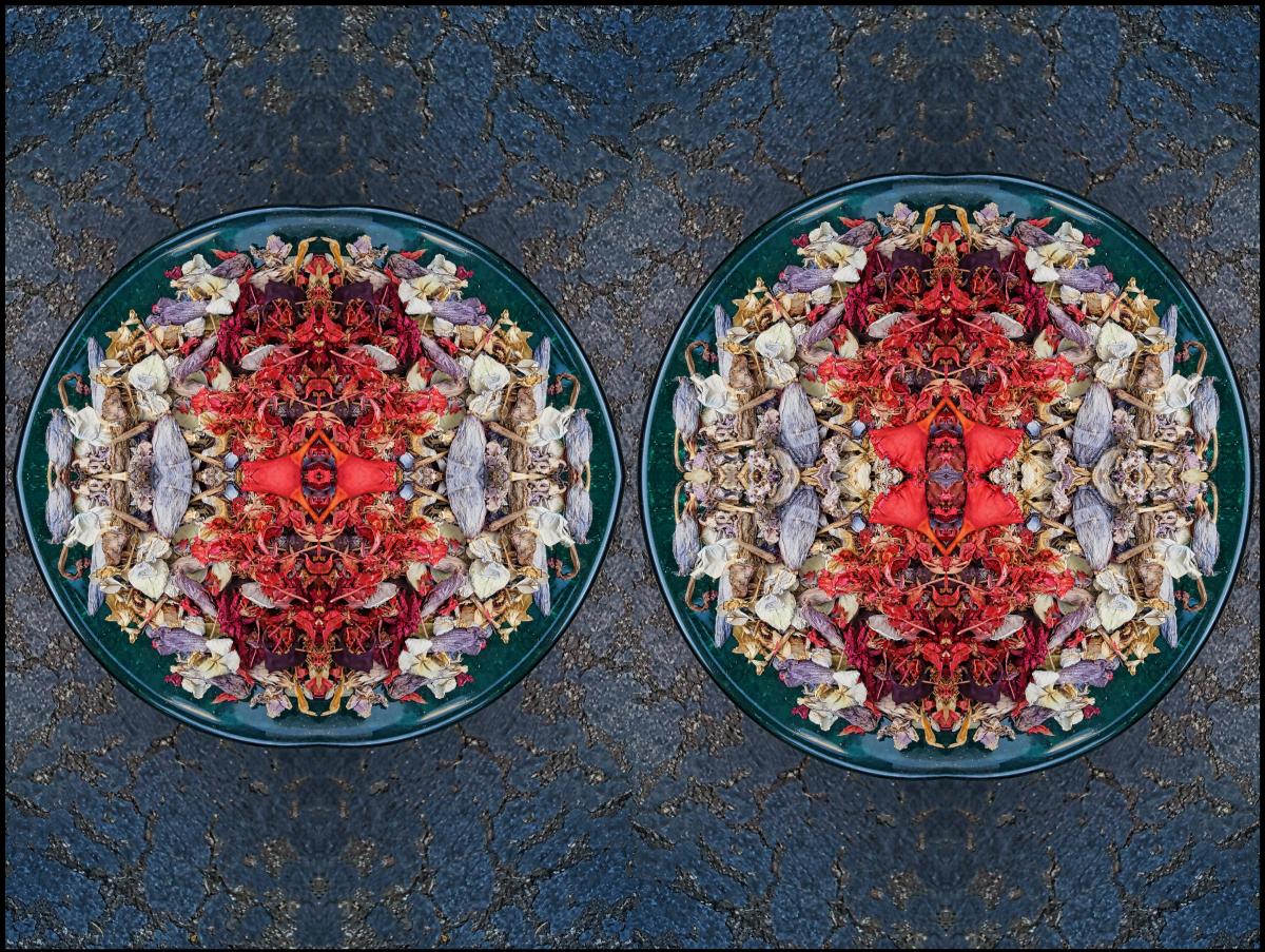 Fraternality - 2014 - Stephen Calhoun