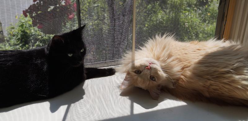 Kizzy & Soony