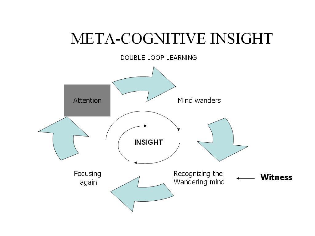 Meta-Cognitive Wandering
