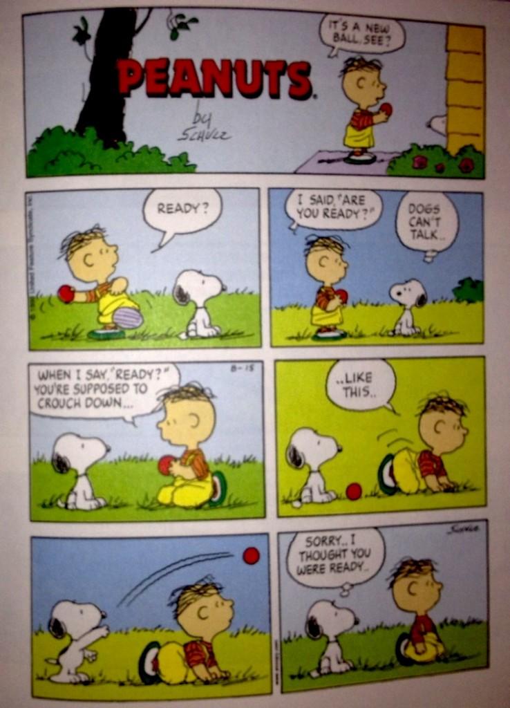 Peanuts-Enactivism