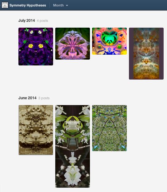 symmetry-hypotheses.tumblr.com
