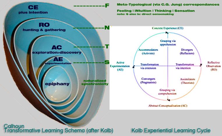 David A. Kolb Model